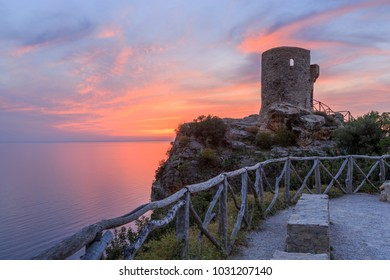 Europe, Spain, Balearic Islands, Mallorca. 