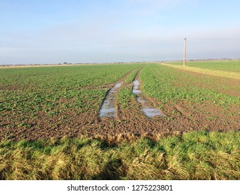 Europe UK East Lincolnshire Mablethorpe December 2018. Fen drain in agricultural field. Open blue sky with clouds. Winter landscape.