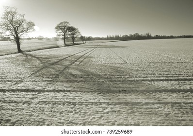 Europe UK Norfolk Edgefield 2002. Winter snow scene on arable farm land. Evening sunset. Bare hedgerows. Snow covered furrows. Sepia image created digitally from colour image.