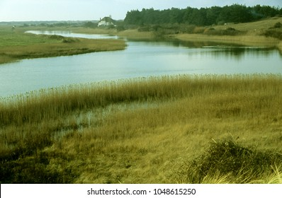 Europe UK Norfolk Thornham Marshes 2003.  Wild grassland and reed beds with tidal estuary flowing from sea. Isolated house in background. Late afternoon light.
