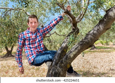 European teenage boy sitting and hanging in olive tree