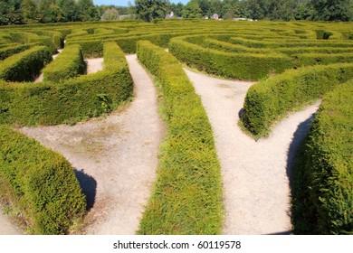 Europe's largest maze at Castlewellan Ireland