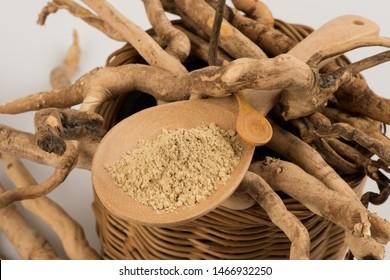 Eurycoma longifolia Jack or Tongkat Ali,roots and powder on white background.
