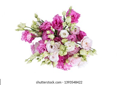 Eustoma flowers bouquet mix of white, purple, rose and violet lisianthus. Isolated on white background