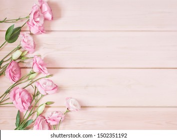 eustoma flowers on a pink background