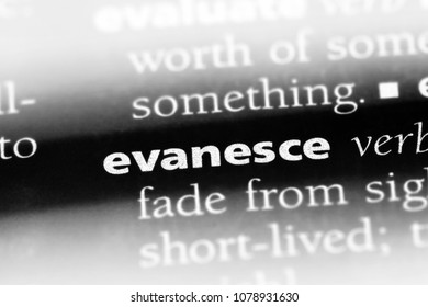 evanesce word in a dictionary. evanesce concept