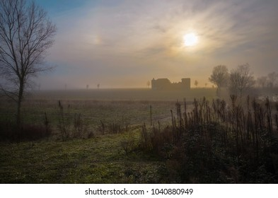 An evanescent and poetic countryside landscape with mist with backlit farmhouse and wild herbs in foreground