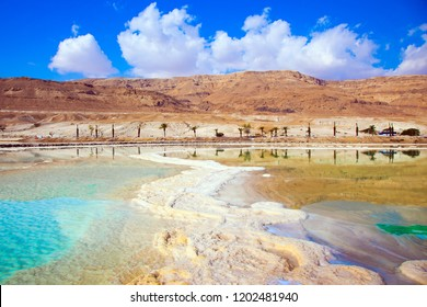 The evaporated salt has developed into fantastic patterns. Reduced water in the very salty Dead Sea, Israel. The concept of medical and ecological tourism