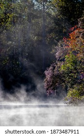 Evaporation Raising from a Lake in a Fantasy Forest on a Cold Misty Morning