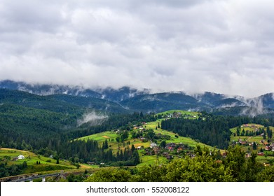 Evaporation water over spruce forest in the morning after rain. Carpathian mountains. Village Vorokhta. Ukraine