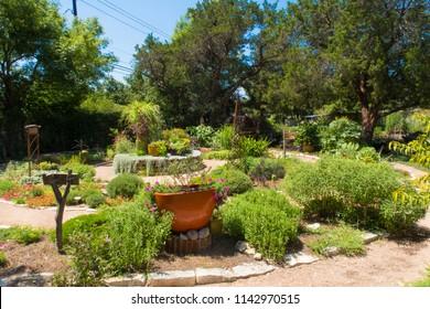even in central Texas a garden can survive summer