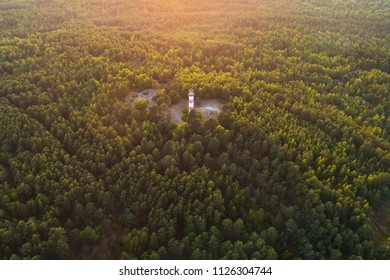 Evening aerial view of lighthouse surrounded by vegetation in Curonian spit near Nida, Lithuania