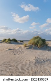 Evening atmosphere in the dunes on the beach with sea view - Kijkduin Strand, The Hague, Holland, Netherlands