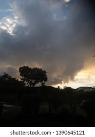 Evening clouds with foreground silhouette of trees and suburbia.