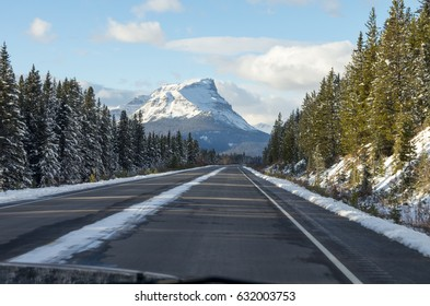 Evening Driving Through the Icefields Parkway in Early Winter