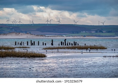 Evening falls over Skern near Appledore, North Devon. With cormorants, gulls, oyster catchers - and the wind farm.