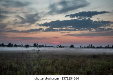 Evening fog in the meadow. Autumn landscape
