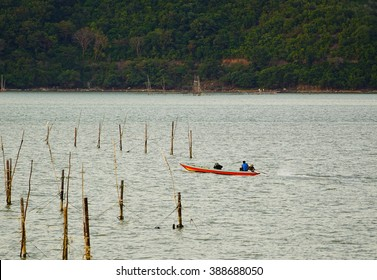 Evening lake view:select focus with shallow depth of field:ideal use for background.