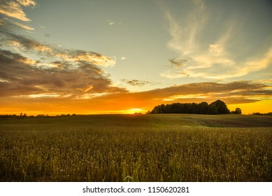 Evening landscape. Beautiful sunset or sunrise over summer field meadow with dramatic orange sky