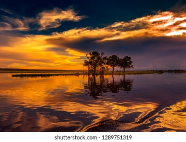 Evening Landscape picture of the Chobe River at the Chobe National Park in Botsuana during summer