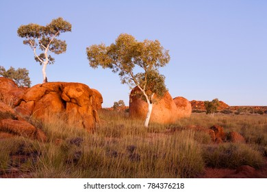 Evening light on the red granite boulders and ghost gums of the Devil's Marbles area in Australia's Northern Territory.