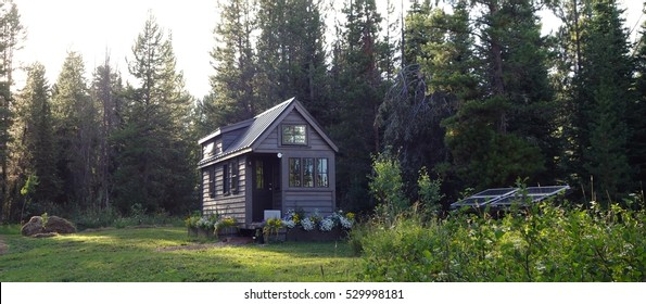 Evening light on a solar powered tiny house in the woods.