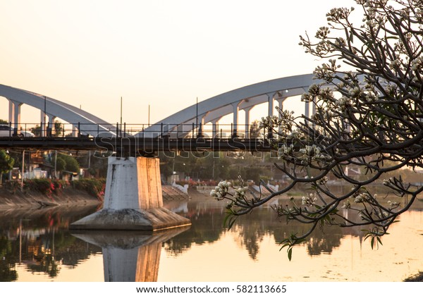 Evening light with white flowers, white bridge. The city of Lampang, Thailand