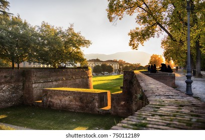 evening at Medieval fortress wall in Lucca , Italy