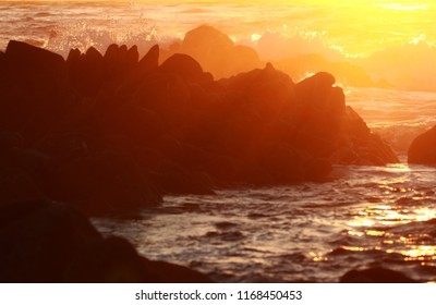 Evening ocean background with blurred foreground for copy