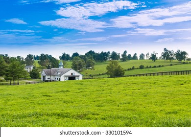 Evening on countryside. Green pastures of horse farms.