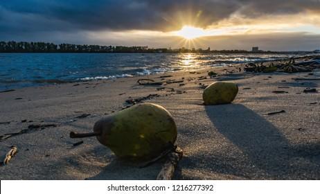 evening on elbe beach, hamburg