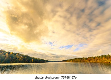 Evening on a forest lake. View from the shore level, image in the yellow-purple toning