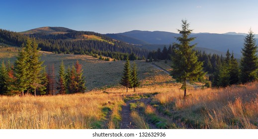 Evening panorama from the mountain road and pine forest in the mountains