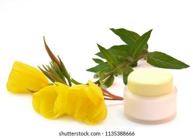 evening primrose next to creme pot with yellow cap