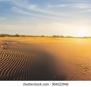 evening sand desert