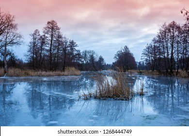 evening scene on frozen river in winter forest