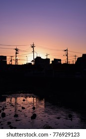 Evening scenery silhouette