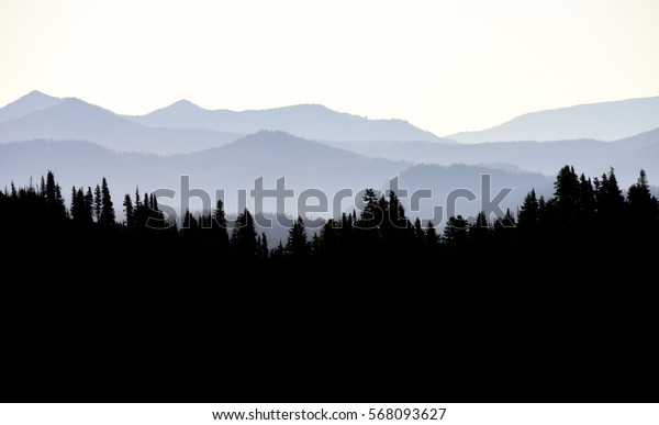 Evening shot of Mount Rainier National Park