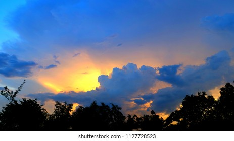 The evening sky with forest silhouette.