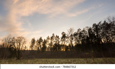 Evening sky over forest. Natural landscape with forest and sky.