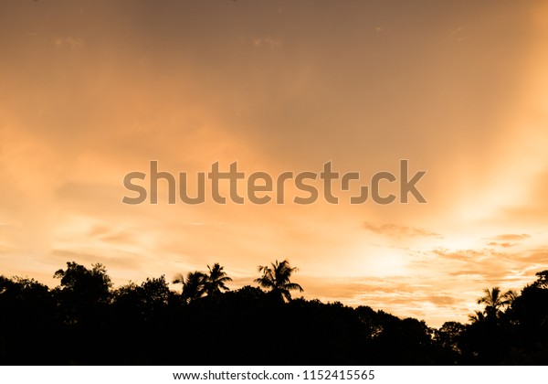 Evening sunset seaside view with coconut trees at Penang, Malaysia.