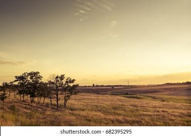 Evening Ukrainian steppe