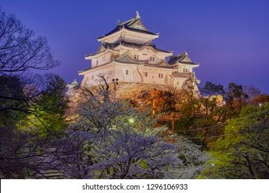 Evening view of beautiful ancient Wakayama castle in cherry-blossom sakura season, Wakayama city, Japan.