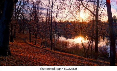 Evening view of the pond in  park, Russia