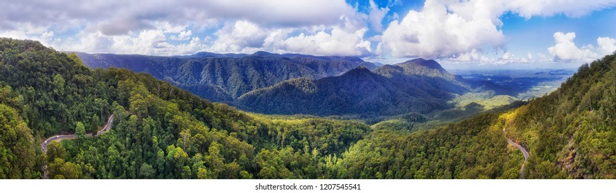 Evergreen ancient Gondwana aged rainforest in Dorrigo National park covered by thick gum-tree woods between mountain ranges along Waterfall road on a sunny day.