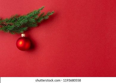 Evergreen branch with red Christmas ball on red background. New Year greeting card with place for text.