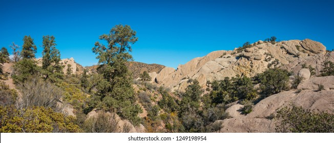 Evergreen trees grow along the rim and throughout canyon land in the Mojave desert.
