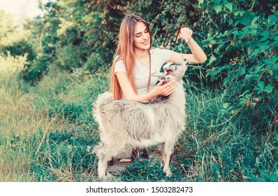 Every animal is different. woman vet feeding goat. farm and farming concept. Animals are our friends. happy girl love goat. village weekend. summer day. Love and protect animals. veterinarian goat.