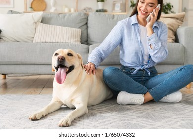 Everyday Life Concept. Casual girl talking on cell phone and caressing labrador, sitting on the floor in living room