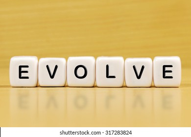 EVOLVE word on blocks